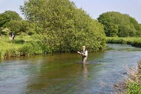 What a Chalkstream should look like