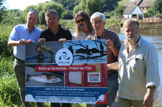 Action on Cormorants - Launched on the banks of the river Severn last July with Des Taylor, Jan Porter and Dave Harrell.