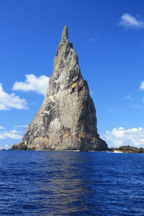 The impressive Ball's Pyramid, the largest 'ocean stack' in the world and home to some serious fishes !