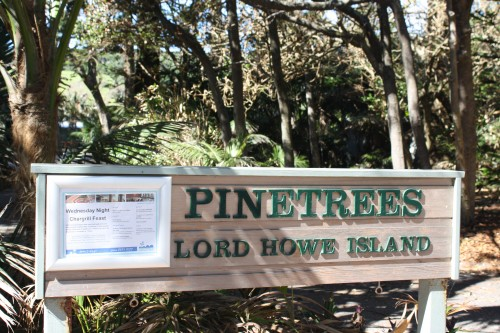 With the high cost of getting provisions to the island self catering is not necessarily the cheapest option and the excellent Pinetrees offers the best value full board accommodation in a perfect setting.