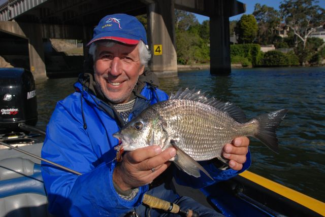 The Aussie bream, or 'brim', looks a bit different to their slimy namesakes that inhabit my local River Thames