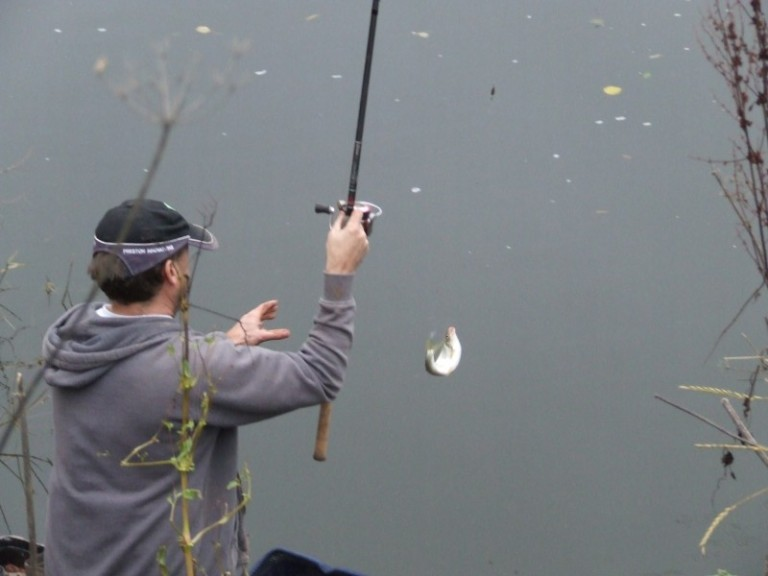 Silver fish were in abundance on many of the downstream pegs