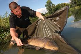 Fish welfare is now hardwired into most UK anglers. Not so everywhere else