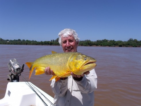 This beautiful bar of fishy gold is a Dorado but then so are many other species!
