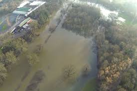 A flooded river Loddon in Berkshire - Happy Xmas 2013