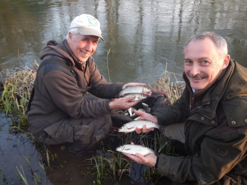Some chunky upper Kennet dace ended the season in fine fashion