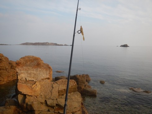 The Sonik Travel Rod -rigged and ready in a minutes - and tough enough to to keep the decent wrasse out of the rocks
