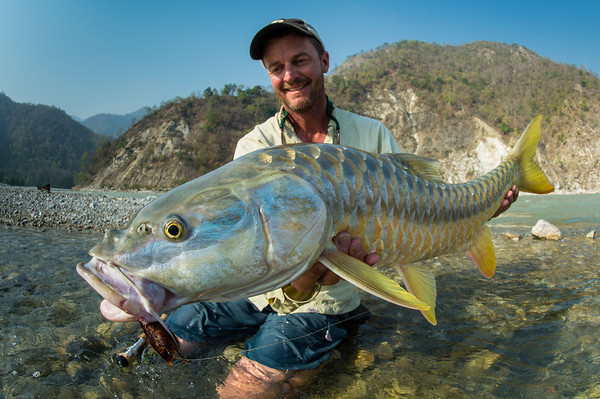 A golden mahseer like this from a remote Himalayan river is Martin's next target - but with the nearest tackle shop 500 miles away preparation is crucial