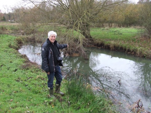Huge increases in fish populations followed habitat improvements on the upper reaches of the Blackwater in Surrey