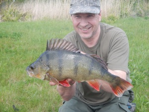 Big gravel pit perch always have such great colouring