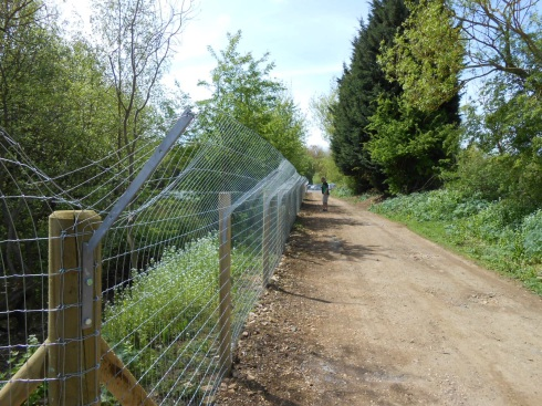 Funding for Otter proof fencing is available through the new Fisheries Improvement Fund