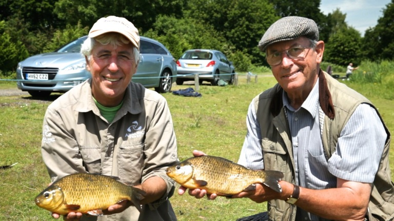 Some of the wonderful crucians to be found at Godalming's Marsh Farm fishery.