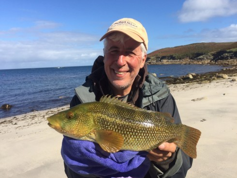 They look good, fight hard and live in great places. What's not to like about wrasse fishing?