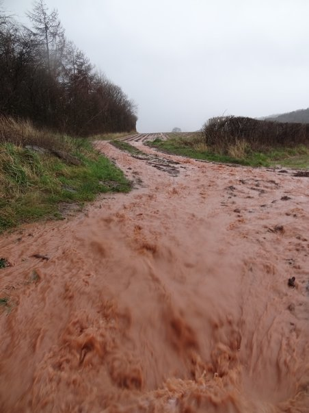 Soil erosion in the Wye Valley