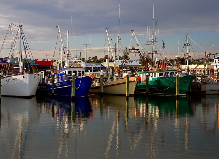 Commercial fisherman like to claim they are feeding the nation but In fact the UK fleet exports 45% of its catch. 80% of that quantity goes to EU countries. For example 90% of fish landed in Ramsgate are sold in the Boulogne Fish Market
